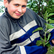 Guy holding a nettle — Foto Stock