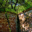 Stock Photo: Wall angle