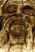 Wooden idol closeup monochrome — Stock Photo