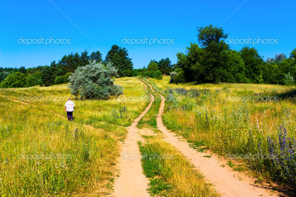 Dirt road on countryside landscape — Stock Photo #1044770