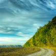 Dirt road — Stock Photo #1097970