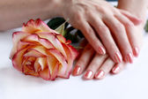 Hands with manicure hear the rose — Stock Photo
