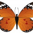 Orange butterfly — Stock Vector