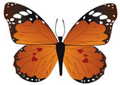 Orange Schmetterling — Stockvektor