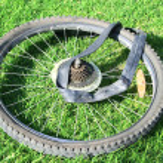 Bike tire — Stock Photo