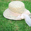 Royalty-Free Stock Photo: Hat on the grass