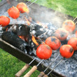Grilled tomato — Stock Photo