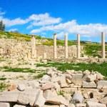 Amathus ruins — Stock Photo #2465386