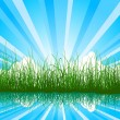 Background with grass, water and sunbeam — Stok Vektör