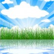 Royalty-Free Stock Vector Image: Sunny summer background with grass, wate