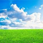 hierba verde y azul cielo nublado — Foto de Stock