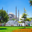 Blue mosque — Stock Photo #1007551