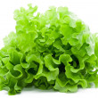 Royalty-Free Stock Photo: Lettuce