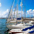 Sailing yachts in Sardinia - Stock Photo