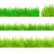 green gras — Stockfoto #1008406