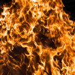 Fire — Stock Photo #1008830