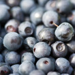 Royalty-Free Stock Photo: Bilberries
