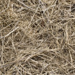 Royalty-Free Stock Photo: Hay