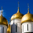 Dormition Cathedral — Stock Photo #1009291