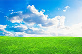 Green grass and blue cloudy sky — Foto de Stock