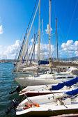 Sailing yachts in Sardinia — Stock Photo