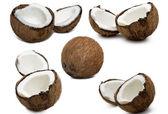 Kokosové ořechy — Stock fotografie