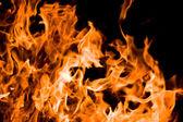 Flamme — Photo