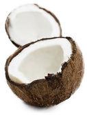 Fresh coconut — Stock Photo
