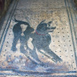 Dog mosaic in Pompeii — Stock Photo
