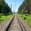 Long railway in the forest — Stock Photo #1012629