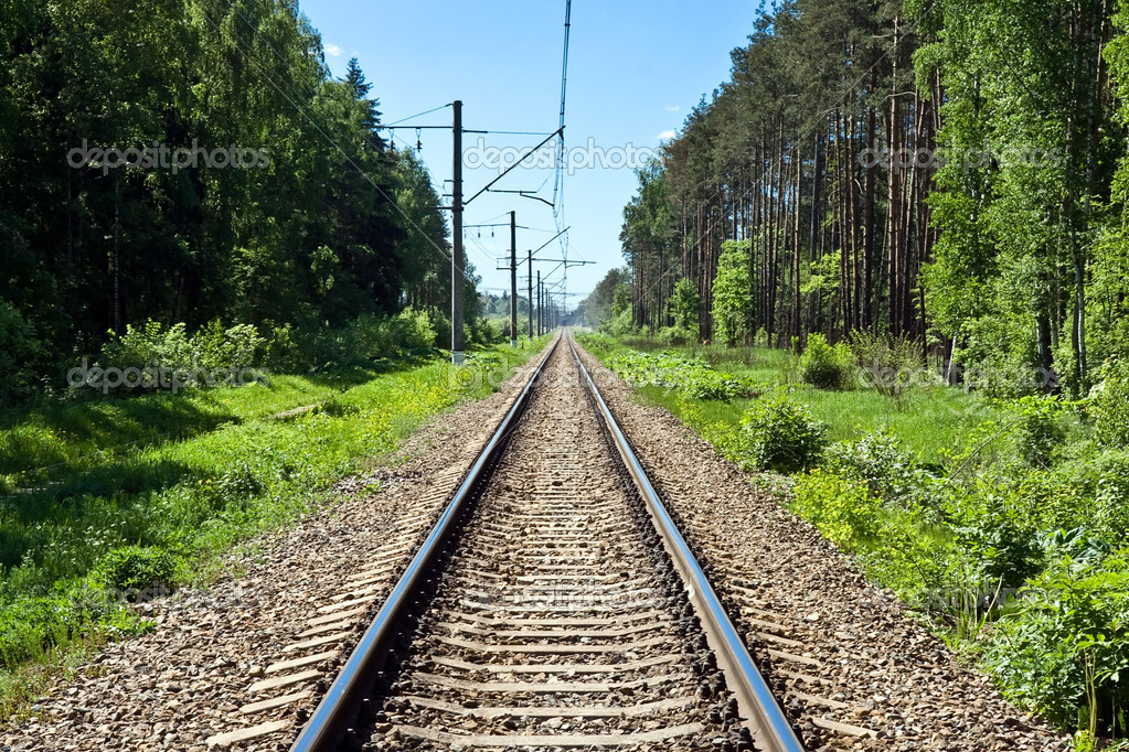 Long railway in the forest — Stock Photo #1010329