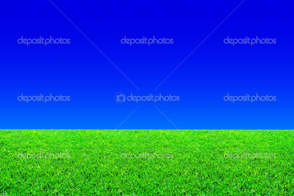Fresh green grass and blue sky background — Stock Photo #1010485