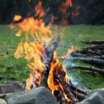Campfire — Stock Photo #1054331