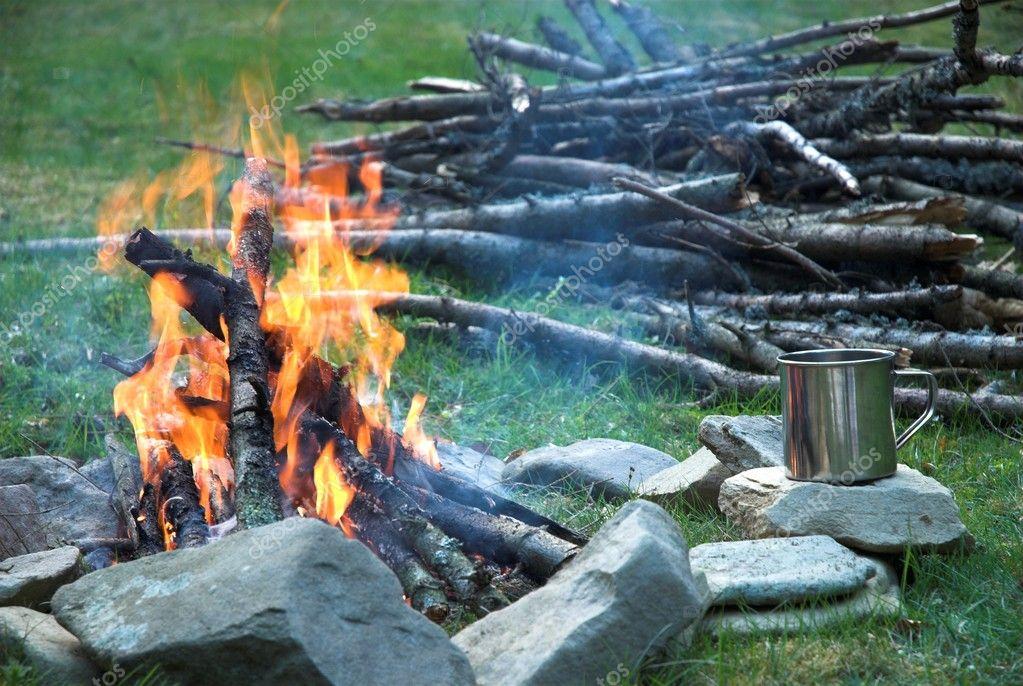 在森林里的篝火晚会.沃洛韦茨区 2007 年春天— 照片作者 petrograd99