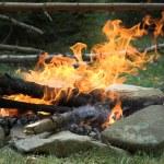 Campfire — Stock Photo #1081528