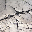 Foto Stock: Dry ground