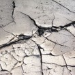 Foto de Stock  : Dry ground