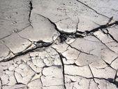 Dry ground — Stock Photo
