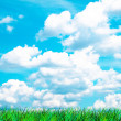 Green Grass and sky — Stock Photo #1067060