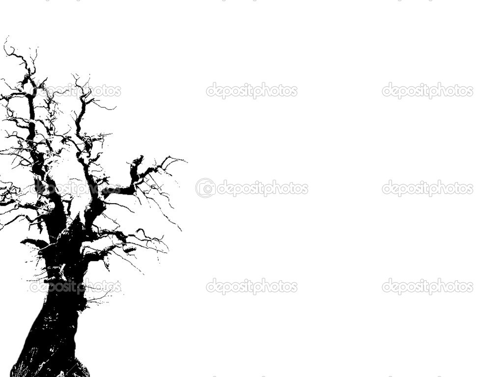  dying tree  Stock Photo #1067005