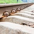 Railroad — Stock Photo #1325031
