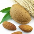 Royalty-Free Stock Photo: Almond with wheat