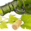 Bottle with grapevine - Stock Photo