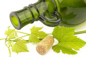Bottle with grapevine — Stock Photo