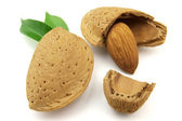 Tasty almond — Stock Photo