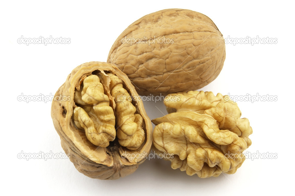 Walnuts on a white background  Stock Photo #1020302