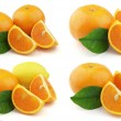 Tangerine and lemon — Stock Photo