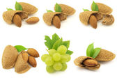 Grapes and almonds — Stock Photo
