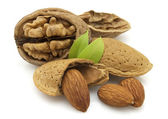 Walnuts and almonds — Stock Photo