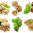 Nuts — Stock Photo #2468245